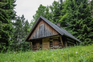 Wanderung: Steinbach - Ybbstalerhütte - Jagdhütte Dürreck
