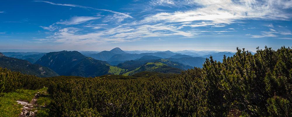 Ybbstalerhütte - Kurz vorm kleinen Dürrenstein Gipfel